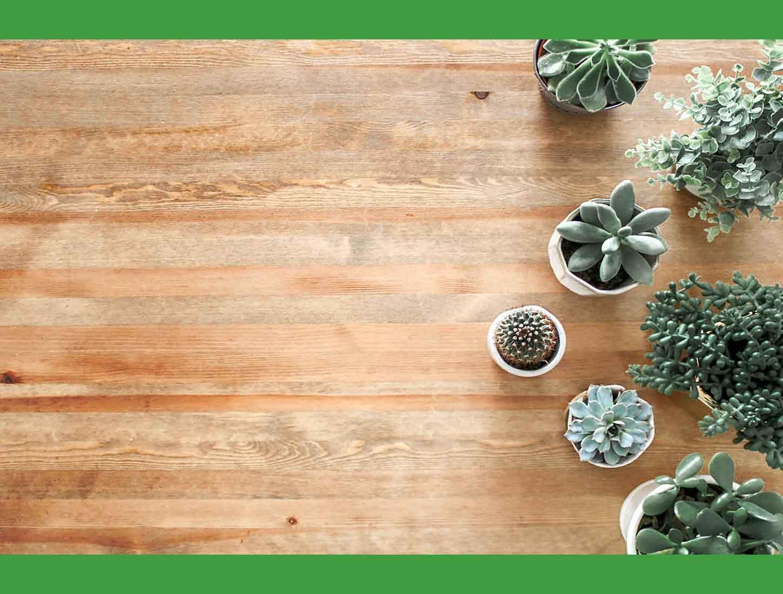 suelo-de-vinilo-con-plantas